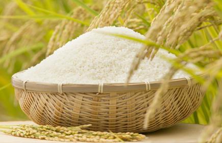 厳選栽培したお米